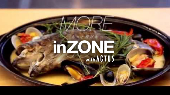 Welcome to inZONE world